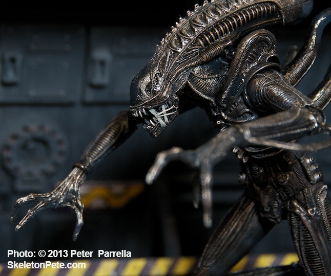 "NECA's new 9"" Xenomorph prepares to pounce on colonial marines."